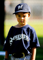 T-BALL BREWERS