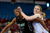 NORCAL D1 GIRLS BASKETBALL FINALS ST. FRANCIS VS. CASTRO VALLEY 3/19/16