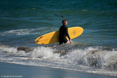 Surfer checks the waves along the beach near Santa Cruz, CA